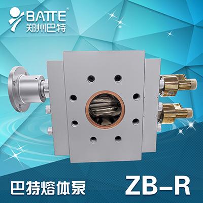 ZB-R橡胶泵(齿轮泵)